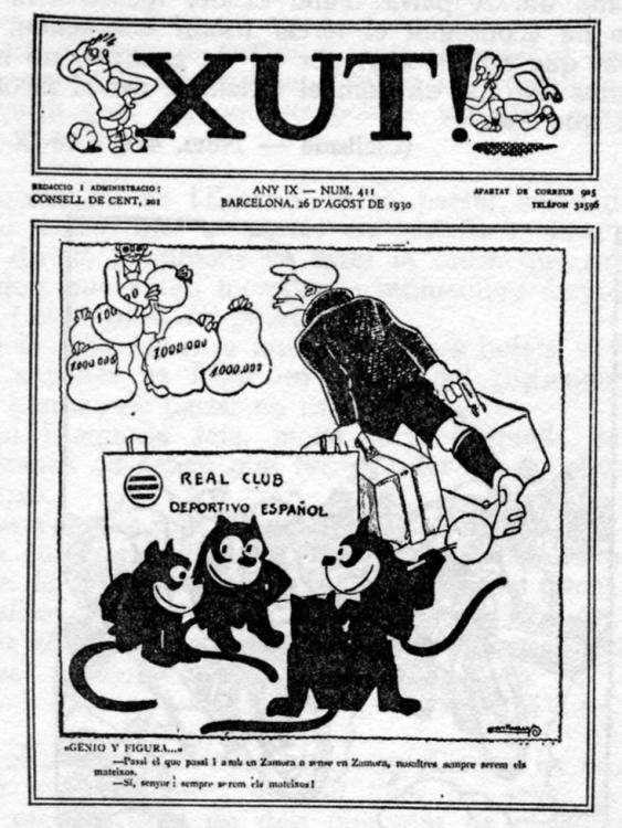 Los gatos periquitos